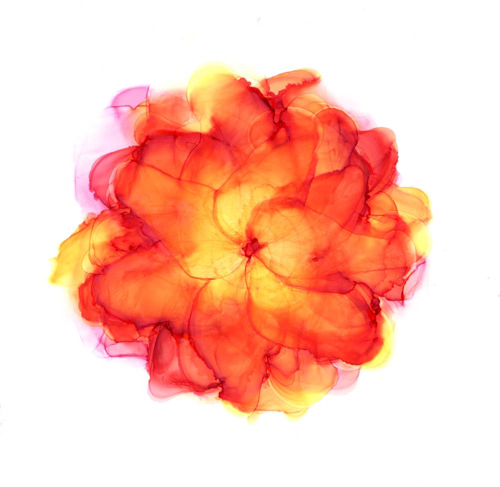 Paineenpurkua - oranssinpunainen voimakasluonteinen kukka vesiväreissä